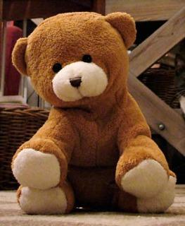 s_Nalle_is_a_small_brown_teddy_bear.jpg