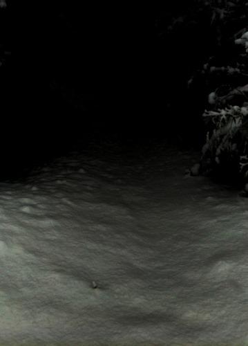 meitei-snow